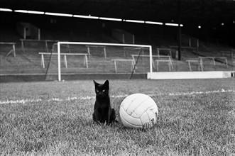 Charlton v Newcastle 1964