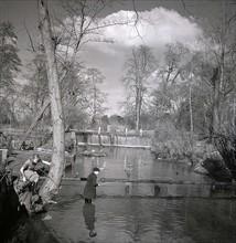Pêche vers Grove Mill, 1949