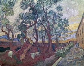 Van Gogh, Le jardin de l'hôpital Saint-Paul