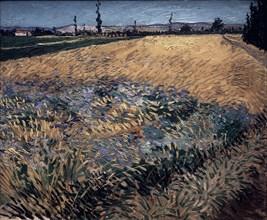 Van Gogh, Vue des Alpilles