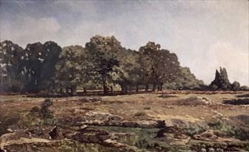 Sisley, Lisière de la forêt de Fontainebleau