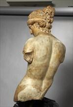 Buste d'Hermaphrodite (vue arrière)