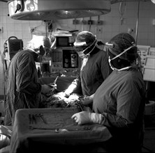 Dr J. V. Larsen's final operating slate