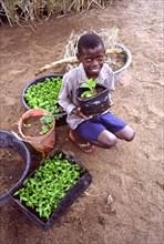 Robinson, Sihle Mlambo, un jeune garçon