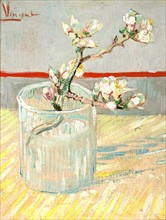 Van Gogh, Branche d'amandier en fleurs dans un verre