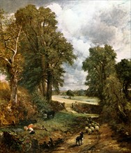 Constable, The cornifield