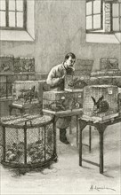 Laboratory used by Louis Pasteur