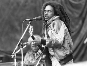 Bob Marley, 1981