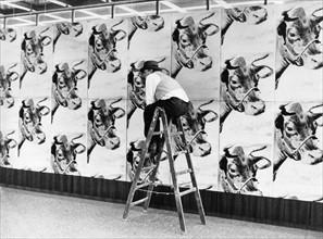 Andy Warhol, Série de vaches