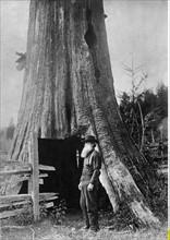 Pionnier dans l'Oregon