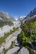 Hiking trail Grand Balcon Nord with view on glacier tongue Mer de Glace