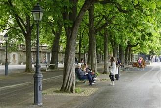 Small park in Geneva