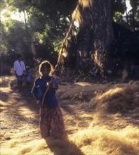 Coconut fibre-Beating & winnowing at Natham