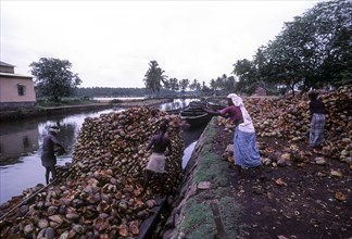 Coconut husk being loaded in the Boat