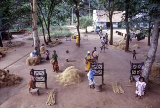 Making Coconut Ropes at Natham