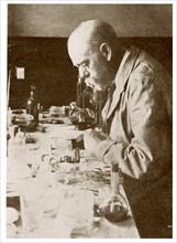 Robert Koch discovering the bacterium tubercle bacillus