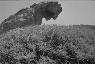 Le rocher du sommeil, Cap de Creus, 1958.