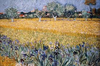 Van Gogh, Field with Irises near Arles