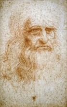 Copie de l'autoportrait de Léonard de Vinci de la bibliothèque royale de Turin