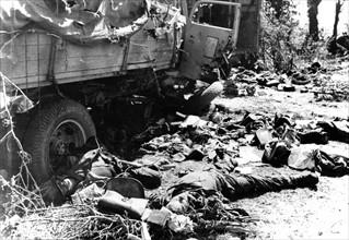 Convoi allemand détruit près de Chambois (1944)