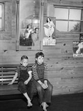 boys, children, rural, barbershop, historical,