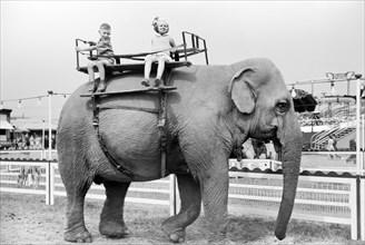 children, elephant, animal, carnival, historical,