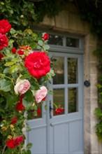 Roses et porte de maison