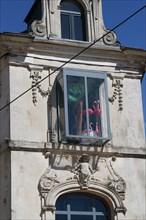 Bow window avec flamants roses, Le Mans