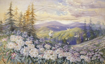 Rowan, Rhododendrons and Butterflies