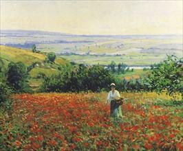 Giran-Max, In the Poppy Field