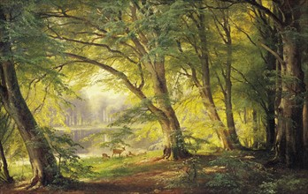 Aagaard, A Forest Glade