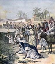 The locust plague, Algeria, 1891. Artist: Henri Meyer