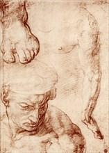 Studies for the figure of the cross-bearer in the Last Judgement, Sistine Chapel, Rome, 1913. Artist: Michelangelo Caravaggio
