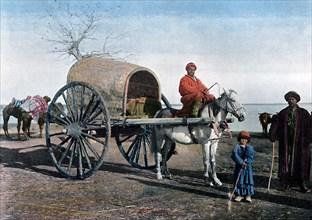 Bukhara wagon, Uzbekistan, c1890. Artist: Gillot