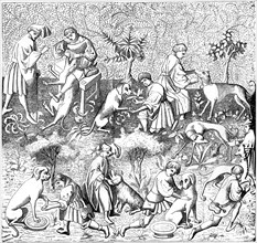 Diseases of dogs and their cures, 14th century (1849). Artist: Unknown