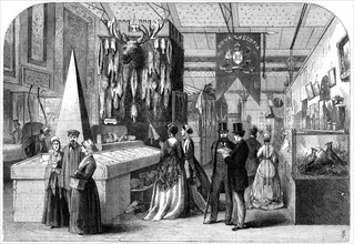The Nova Scotia section of the Paris International Exhibition, 1867. Artist: Unknown