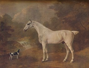'A Flea-Bitten Grey and a Spotted Terrier', 1803.