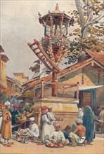 'A Feeding-Place for Birds, Ahmedabad', c1880 (1905). Creator: Alexander Henry Hallam Murray.