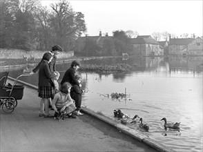 Village duck pond scene, Tickhill, Doncaster, South Yorkshire, 1961. Artist: Michael Walters