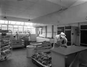 The Danish Bacon Company factory, Kilnhurst, South Yorkshire, 1957. Artist: Michael Walters