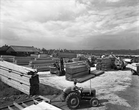A busy timber yard, Bolton upon Dearne, South Yorkshire, 1960.  Artist: Michael Walters