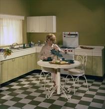 Kitchen scene, Warwick, Warwickshire, 1966. Artist: Michael Walters