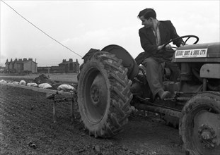 Road construction work, Doncaster, South Yorkshire, November 1955. Artist: Michael Walters