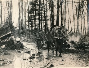 Wrecked German vehicles in a forest on the road to Saverne, November 1944. Artist: Unknown