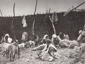 Sheep shearing, Russia, c1875-c1877. Artist: Ivan Boldyrev