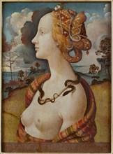 Portrait of Simonetta Vespucci (Cleopatra), c. 1480. Artist: Piero di Cosimo (ca 1462-ca 1521)