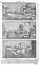 Illustration from Liber canonis de medicinis cordialibus by Avicenna, 1556. Artist: Anonymous