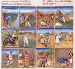 Ruralia commoda. Agricultural calendar from a manuscript of Pietro de' Crescenzi, ca 1470-1475.