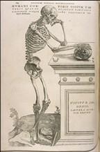Illustration from De humani corporis fabrica by Andreas Vesalius, ca 1543.