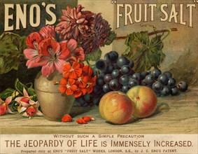 Eno?s Fruit Salt, 19th century. Artist: Unknown